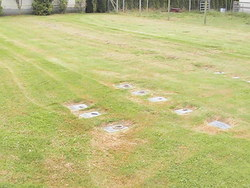Country Rest Pet Cemetery
