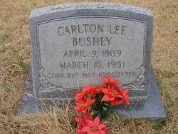Carlton Lee Bushey