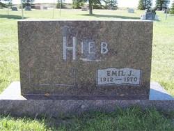 Emil J. Hieb