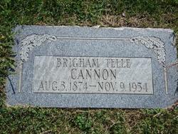 Brigham Telle Cannon