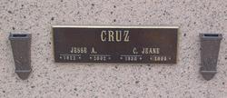 Jeane <i>Hickman</i> Cruz