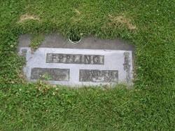 Walter Guston Eppling