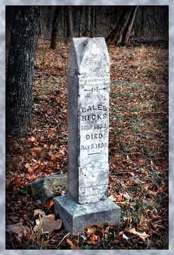 George Caleb Hicks