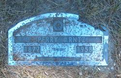James Perry Arntz