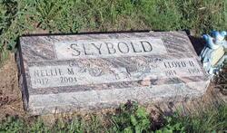 Lloyd Haywood Seybold
