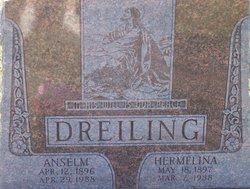 Anselm P. Dreiling