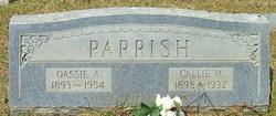 Callie M. Parrish