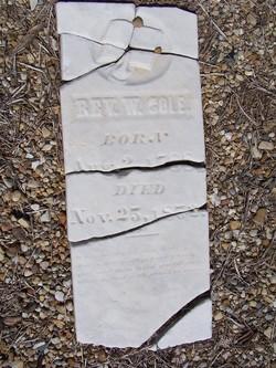 Rev William F. Cole