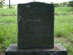 Nancy Ellen Nannie <i>Hughes</i> Parr