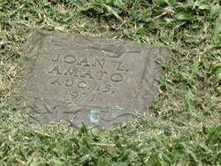 Joan L Amato