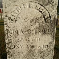 Alfred F Seidel