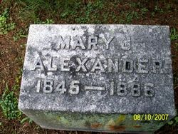 Mary J Alexander
