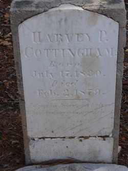 Harvey Pitts Cottingham