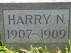 Harry Kneel Angus