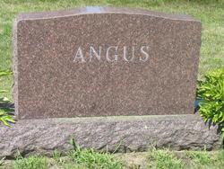 Walter H Angus, Jr