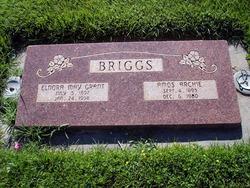 Amos Archie Briggs