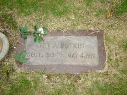 Joy Amos Botkin