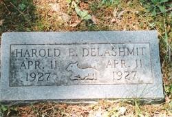 Harold E. Delashmit