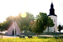 F�r� kyrkog�rd (F�r� Churchyard)
