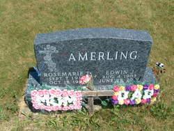 Rosemarie T <i>Boegel</i> Amerling