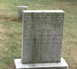 Emeline Clementine <i>Strine</i> Avey