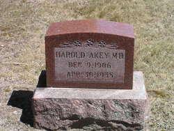 Dr Harold Akey