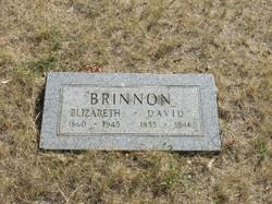 David Brinnon