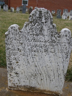 Mary Magdalina <i>Hargersheimer</i> Brandenburg