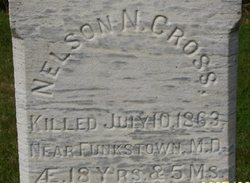Nelson N Cross