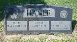 Raymond S. Haner, Jr