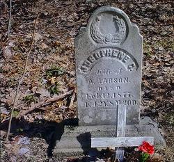 Josophene C Larson