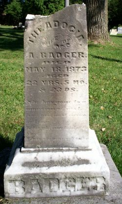 Theodocia <i>Low</i> Badger