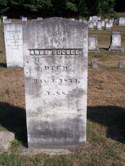 Amos Bugbee