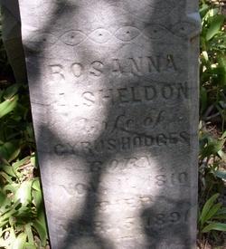 Rosanna <i>Arnold</i> Hodges Sheldon Childs