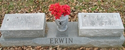 Joe Alexander Erwin