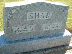 Alice Amelia <i>Strader</i> Shaw