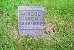 Adison Lyon