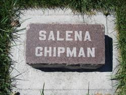 Salena <i>Huntsman</i> Chipman