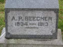 A. P. Beecher