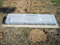 James Rod Norman