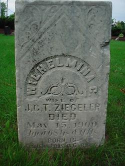 Julius Gottfrey Theodore Ziegeler
