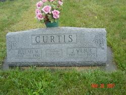 John Wilbur Curtis