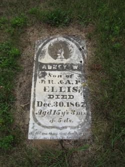 Adney W Ellis