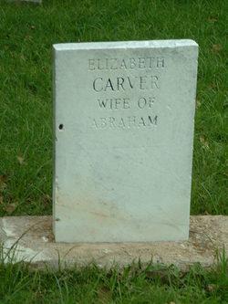 Elizabeth <i>Cline</i> Carver