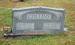 Nettie <i>Chandler</i> [Shaw] Collins