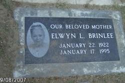 Elwyn L Brinlee