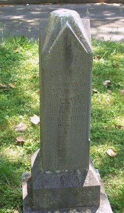 Amelia J. Lewis