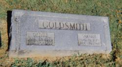 Sarah Elizabeth <i>Jaggers</i> Goldsmith