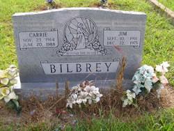 James Overton Bilbrey