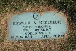 Edward A Herzbrun